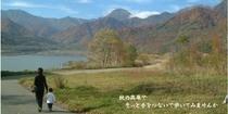 秋の笹ヶ峰