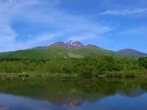 いもり池からの妙高山