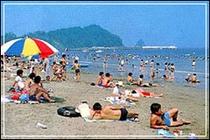 夏は海水浴