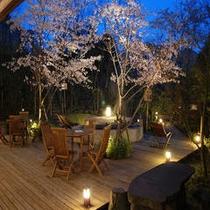 桜満開のテーブル付き足湯