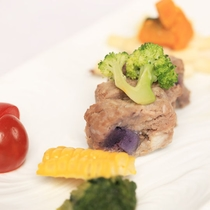【D+KIRISHIMA】【愛犬夕食/選べる3つのメイン】「鹿肉のハンバーグ」