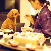 【D+KIRISHIMA】お部屋食だからわんちゃんものんびり♪