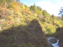 奥五十沢渓谷(当ロッヂから車で約45分)