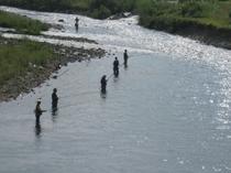 魚野川(姥島橋まで当ロッヂから車で約3分から)