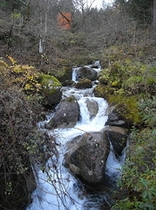 宿の裏を流れる渓流