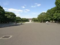上野公園(国立博物館前)- Ueno park
