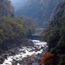 【香落渓】斧で断ち割ったかのような岩肌が8キロ続く渓谷。春のツツジや秋の紅葉が人気(車で約50分)