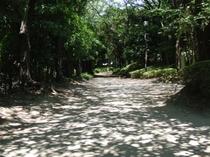 品川区民公園ジョギングコース②