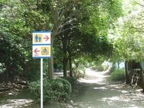 品川区民公園ジョギングコース⑤
