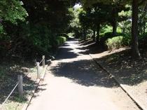 品川区民公園ジョギングコース①