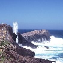 龍宮の潮吹き|高さが30mにも達することも