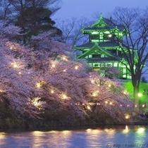 高田城観桜会