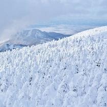 冬:蔵王山の樹氷(1月)04