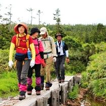 *美味しい空気を吸って、山歩きをお楽しみください♪