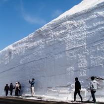 *【雪の回廊】道路の両側にそびえる巨大な雪の回廊。