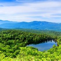 *木々の緑と青空のコントラストが美しい八幡平の夏
