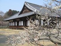 日本遺産・弘道館(茨城県水戸市)