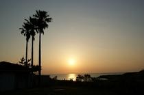 中庭からの夕陽