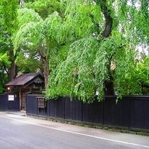 武家屋敷新緑黒塀