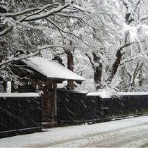 初冬の武家屋敷