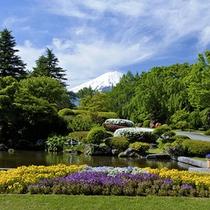 新緑の頃の庭園からの絶景