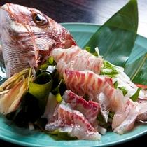 鮮魚姿造り付朝食プラン