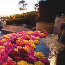 【曜日限定】薔薇風呂