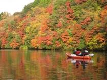 亀山湖の紅葉は11月下中から12月中旬が見頃です。
