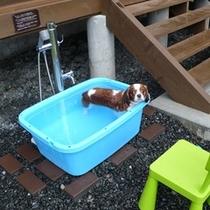 【バケーションビレッジ】愛犬用温泉