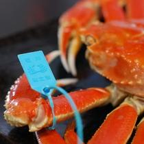 ブランド蟹:加能蟹