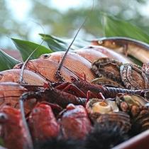 〓島に集う新鮮な海幸〓