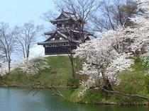 春の高田城