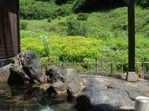 露天風呂からの眺め