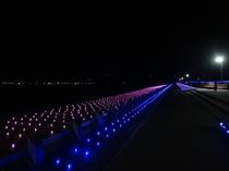 西能登里浜イルミネーション「ときめき桜回廊」