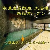大浴場:高濃度炭酸泉~福来路-ふくろう-の湯~①