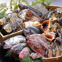 【朝獲れ魚市場直送】姿造り付き五種盛り+鮑の踊り焼き+地魚の焼き物など☆瀬戸内地魚会席