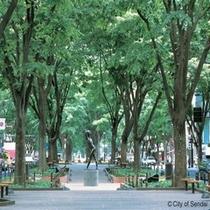 ◇ビルの谷間を彩る緑の帯。定禅寺通のたたずまいは「杜の都」のイメージそのままです。