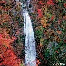 ◇癒しの場所ならココ!!秋保大滝。車で30分程度でーす。