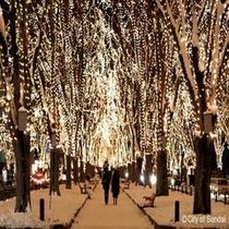 ◇仙台の冬の風物詩「光のページェント」は必見!!