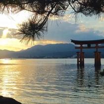 宮島は夕日が綺麗に見えることでも知られています。