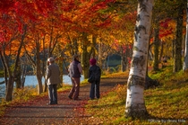 女神湖の紅葉