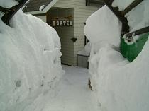 トムテン冬