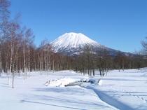 雪の羊蹄山