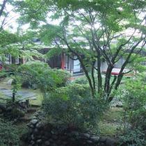 自然溢れる寛ぎの宿
