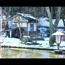 庭風景~冬~