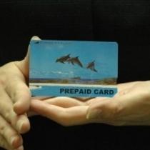 有料TVカードプレゼントプランございます。