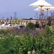 【ハーブガーデン】ようこそ、癒しのガーデンホテルへ。庭がもたらすうるおいを存分に