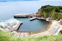 国民宿舎くろ潮の眼下に広がる矢びつ海岸は新鮮で豊富な魚介類の宝庫