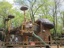 おもちゃ王国のワクワク大冒険の森