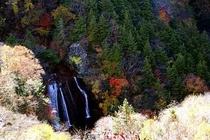 紅葉の王滝(1)